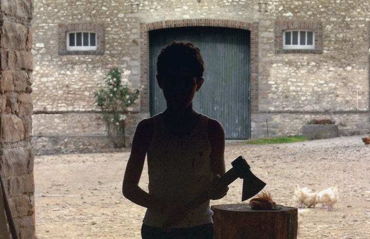 The Cinema of Michael Haneke between artifice and reality